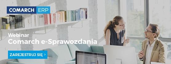 eSprawozdania – Bezpłatny webinar